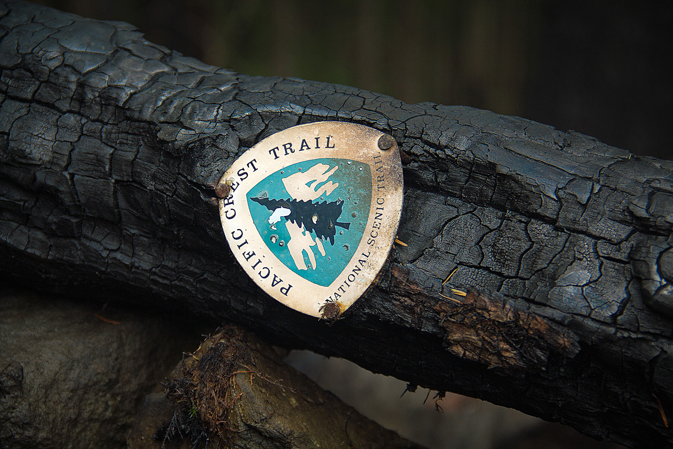 burn area safety information for the pacific crest trail