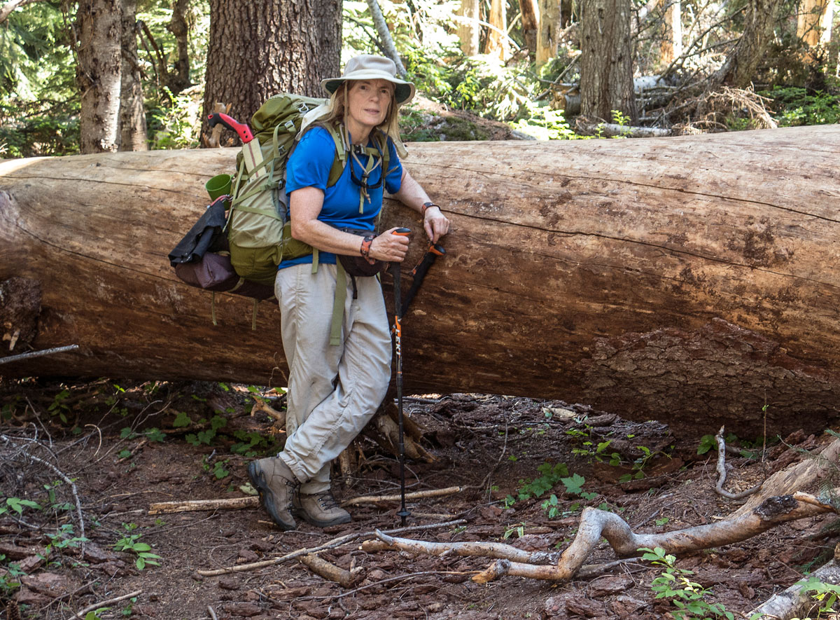 The small handsaw in this volunteer's backpack is useful for tackling brushing and clearing smaller logs from the trail. For this log... we're going to need a bigger saw! Photo by Loren Schmidt.
