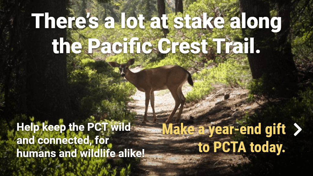 There's a lot at stake along the Pacific Crest Trail.  Help keep the PCT wild and connected, for humans and wildlife alike! Make a year-end gift to PCTA today.