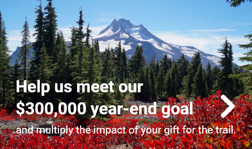 Help us meet our $300,000 year-end goal and multiply the impact of your gift for the trail.